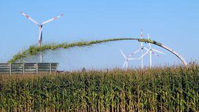 Ein Feldhäcksler bläst gehäckselten Mais in einen Anhänger, im Hintergrund Windräder