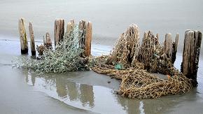 Treibgut, alte Fischernetze am Strand