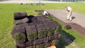 Drei Männer verlegen neuen Rollrasen auf einem Fußballfeld.