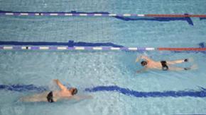 Zwei Sportler schwimmen Kraul in einem Hallenbad in Schleswig-Holstein.