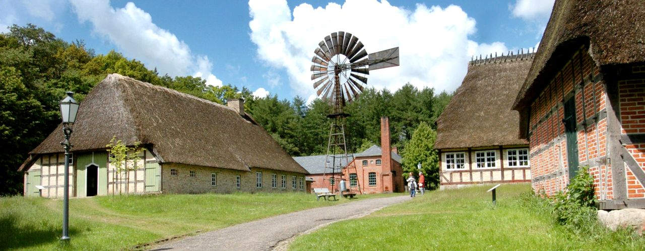 Some buildings in the open-air museum Molfsee