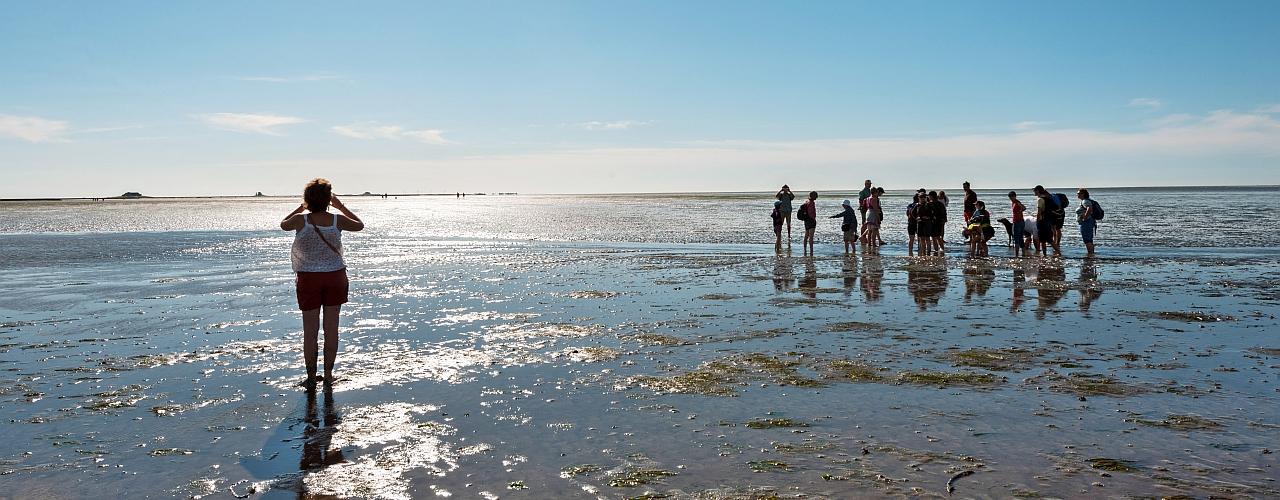 Eine Gruppe von Menschen wandert durch das Watt bei Nordstrandischmoor